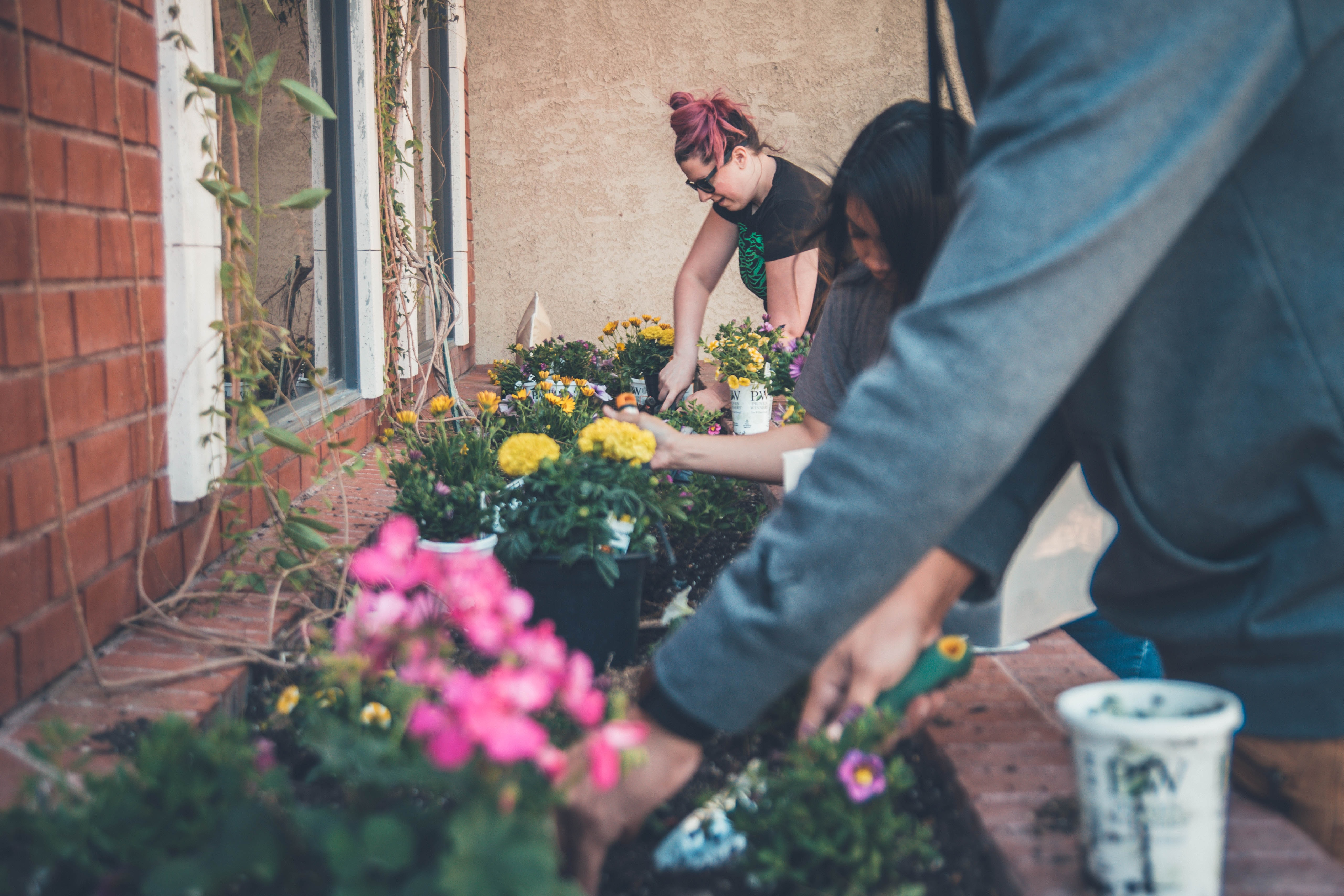 profile image of volunteer gardenners digging soil to plant yellow and pink flowers into a brick window box